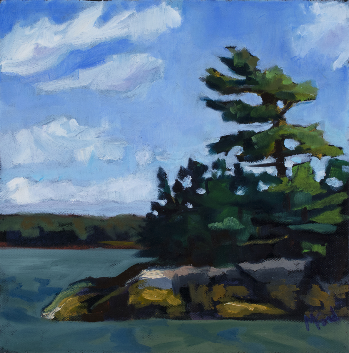 White Pine (large view)