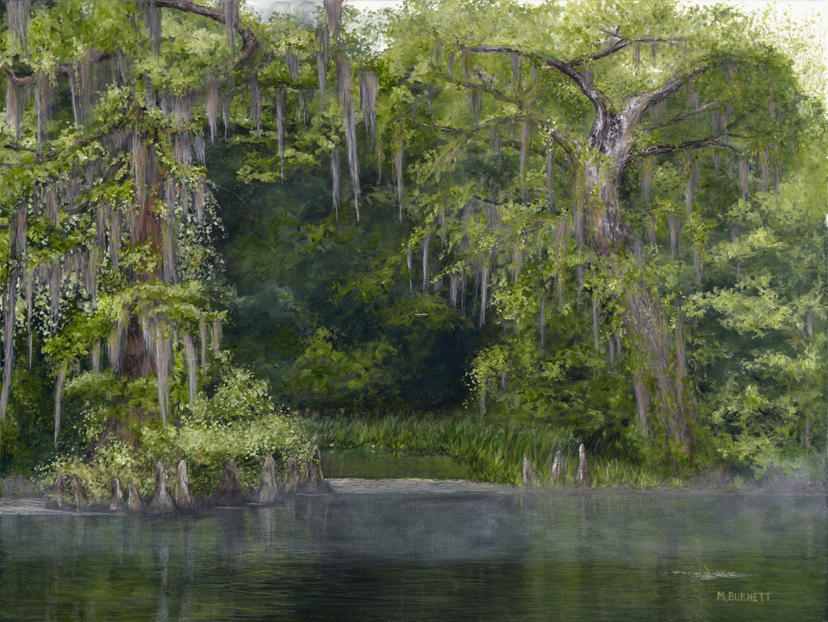 Wakulla Springs  Woodland Passage (large view)