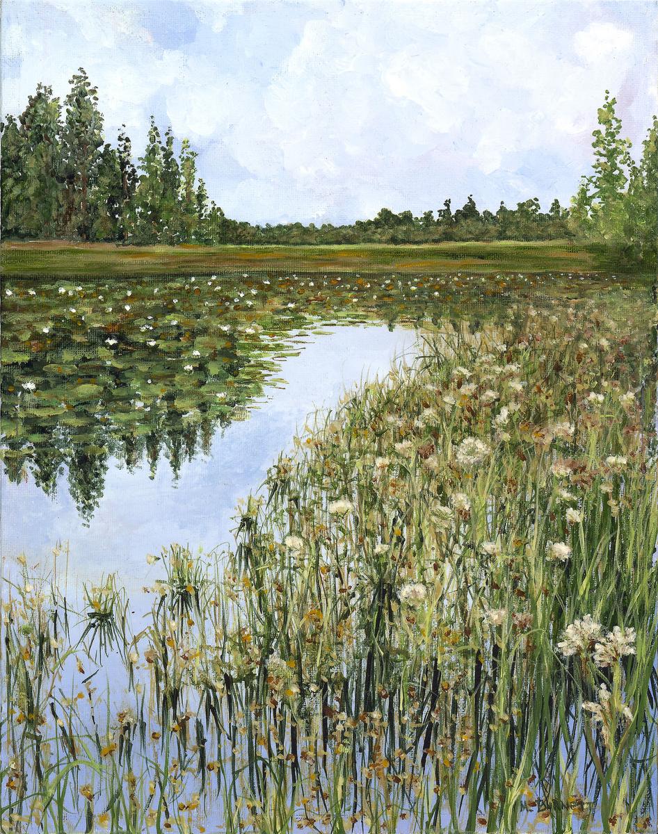 Okefenokee Swamp in Bloom (large view)