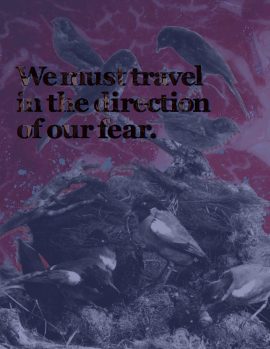 Direction of Our Fears