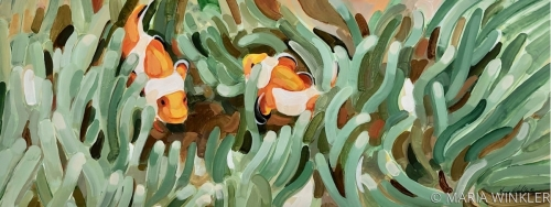 Two Clown Fish