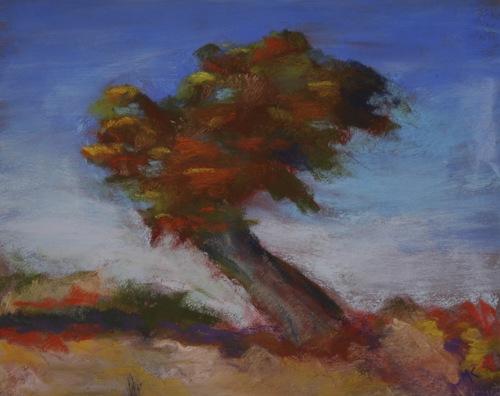 Windswept by Marilyn Kleinhans