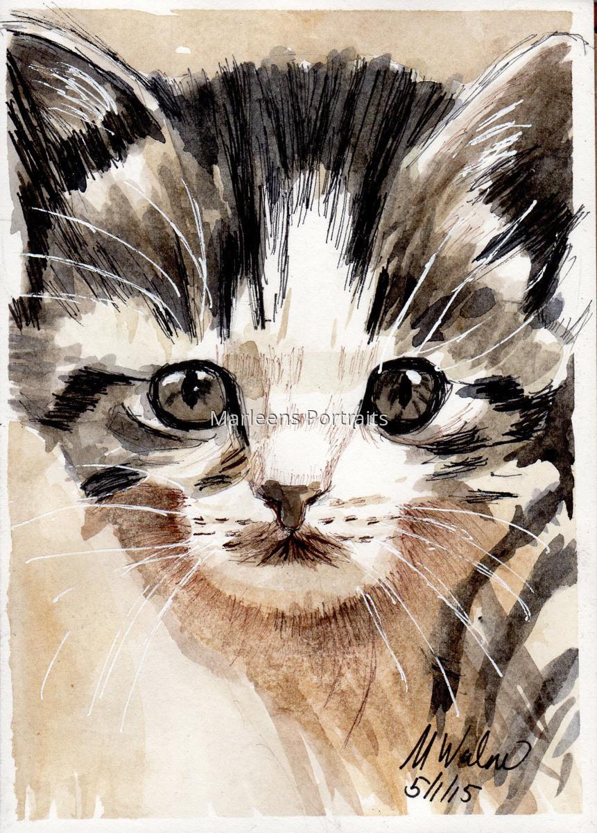 Cute Kitten (large view)
