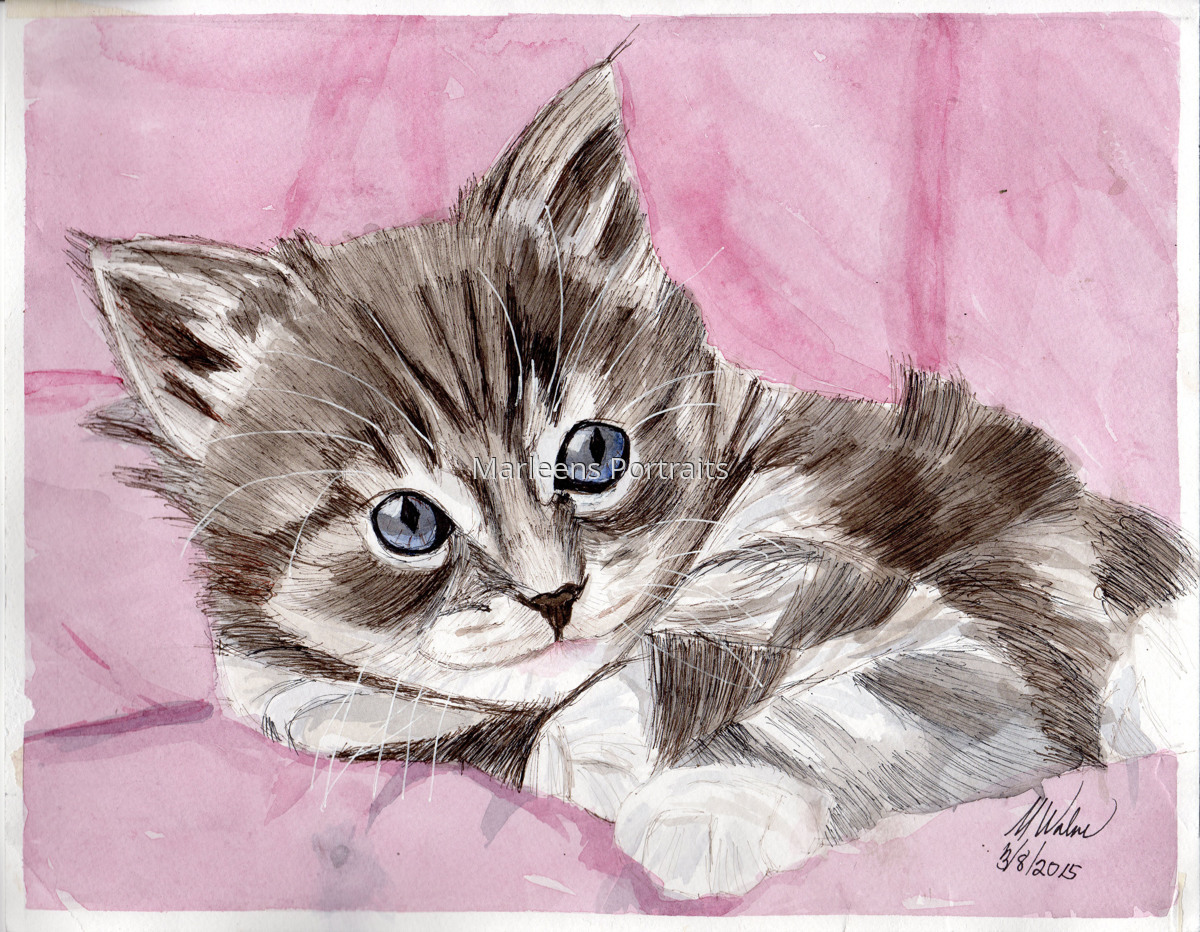 Greyish Kitten (large view)