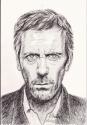 Hugh Laurie (thumbnail)