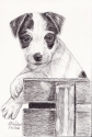 Puppy on Bench (thumbnail)