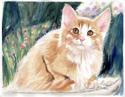 Large Cat (thumbnail)