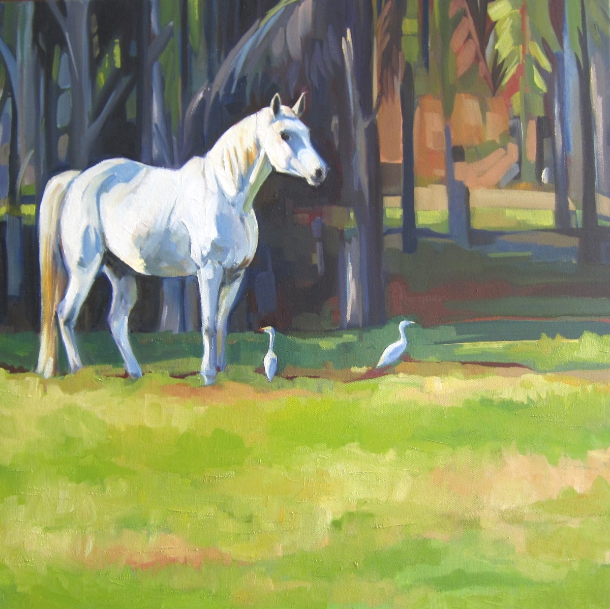 White horse with 2 White Egrets (large view)