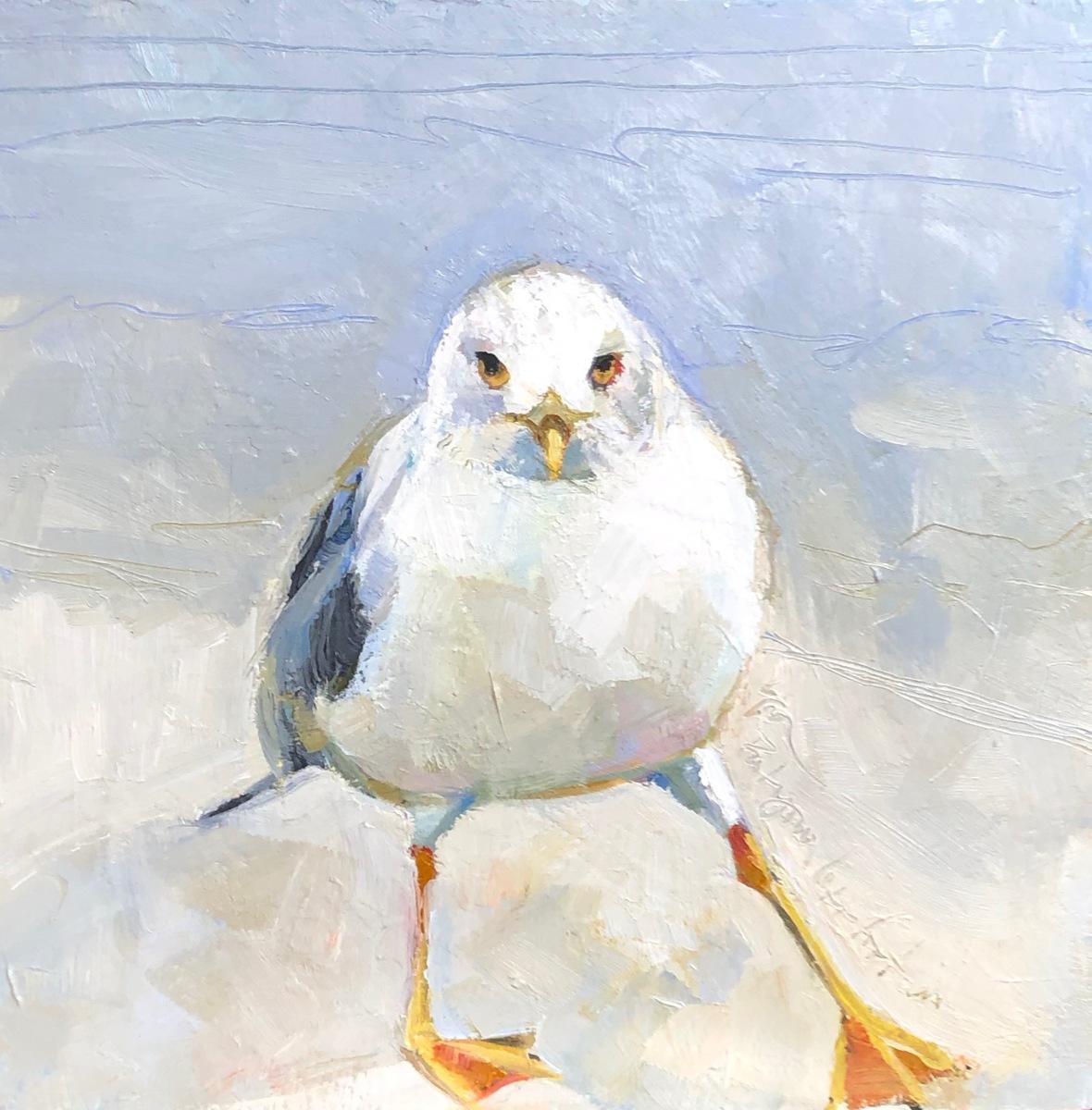 Hokey Pokey Gull (large view)