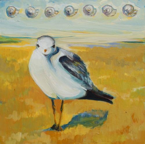 Shell Gull