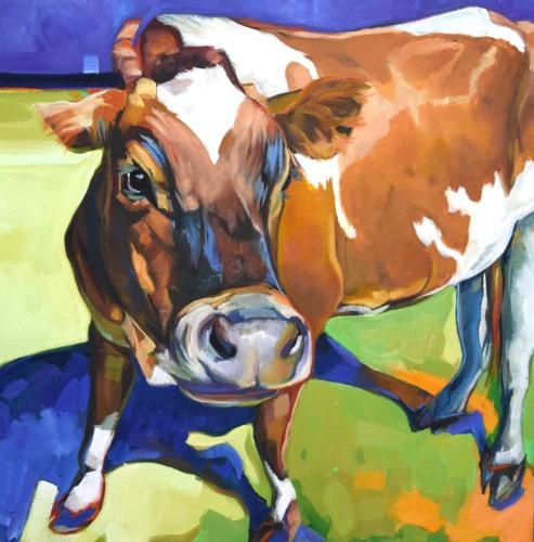 A Dandy Steer