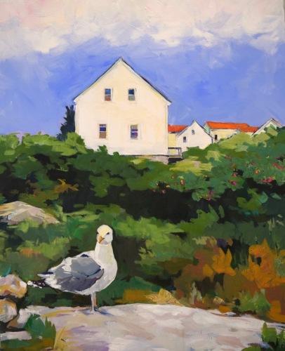 Star Island Gull
