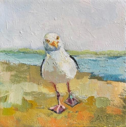 Jaunty Gull
