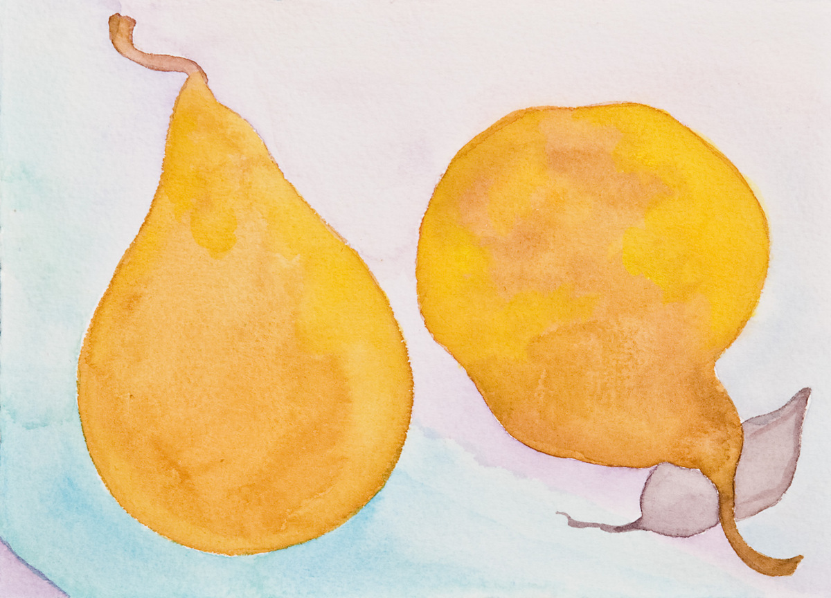 Pears 7 - Bosc, 1999 (large view)
