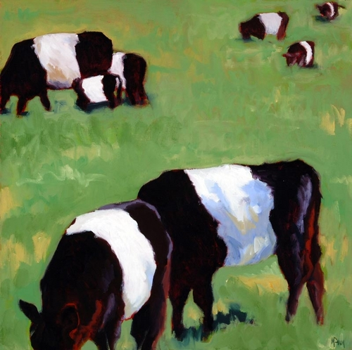 Belted Galloways I (large view)