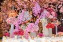 WEDDINGS 045 (thumbnail)