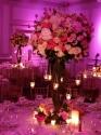 WEDDINGS 072 (thumbnail)