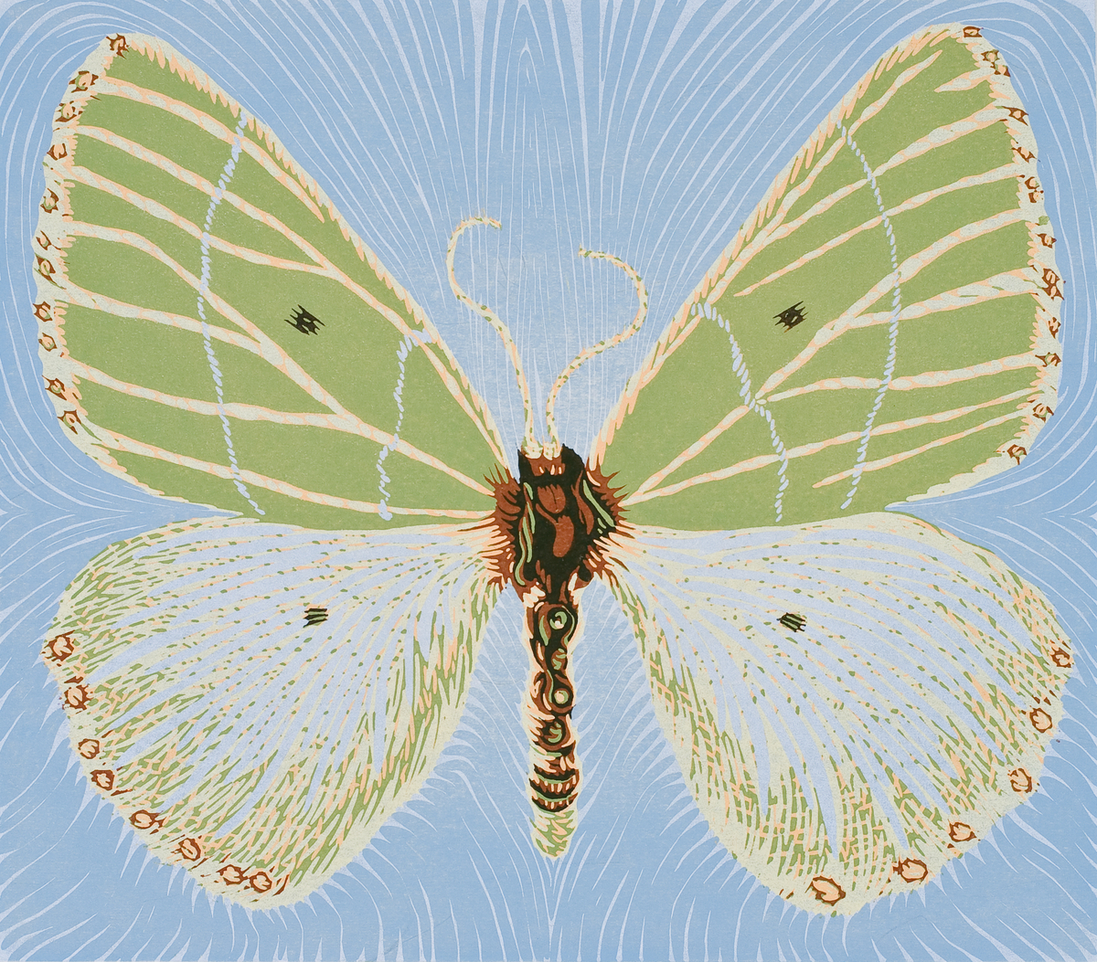 Moth Three (large view)