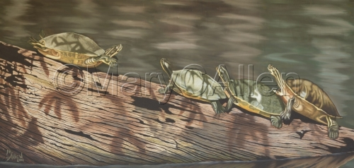 Turtles on a Log (oil) by Mary C Allen