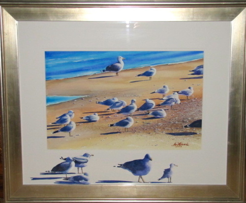 Seagulls Outside the Box