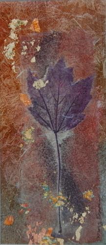 Maple in Purple