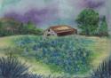 Field of Blues (thumbnail)