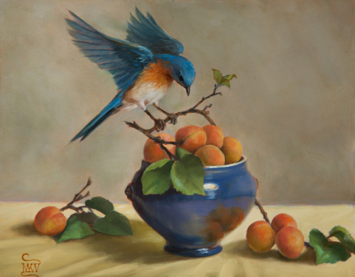 """Bluebird and Apricots"" by Mary Kay West Fine Art"