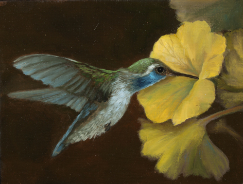 """Hummingbird with Yellow Flower"" by Mary Kay West Fine Art"