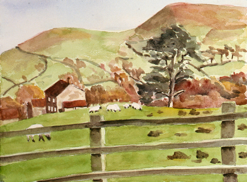 Yorkshire Pasture