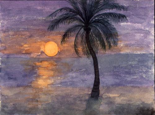Florida Moon Rise