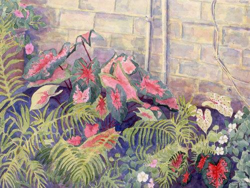 Garden Series #6