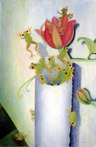 Tree Frogs & Passion Flower