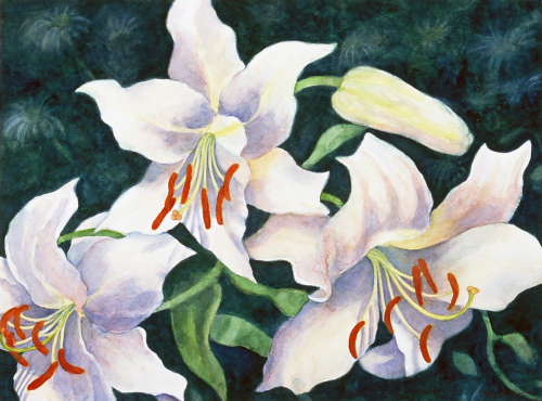 Lilies - 2002 by Mary Muskus Graham
