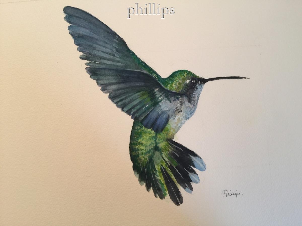 Hummingbird #2 (large view)