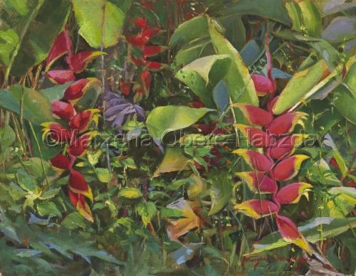 Hawaiian Flora