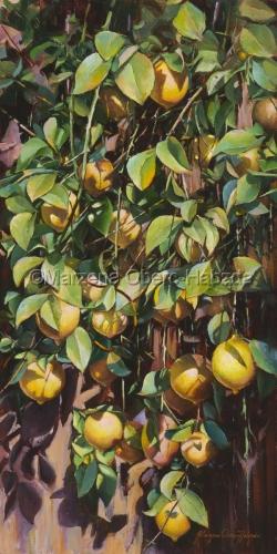 Sun Kissed Lemons