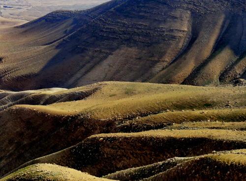 Flowing Hills 1