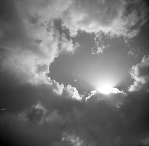 Sunburst by MAURA BRENNAN