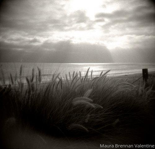 Light as a Feather by MAURA BRENNAN