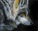 DARK of NIGHT WOLF ~ by M BALDWIN (thumbnail)