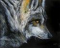 Painting--Oil-WildlifeDARK of NIGHT WOLF ~ by M BALDWIN