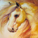 GOLDEN PALOMINO by M BALDWIN (thumbnail)