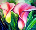 Painting--Oil-FloralPINK CALLA LILY