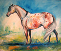 APPALOOSA MEADOW (thumbnail)