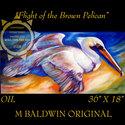 FLIGHT of the BROWN PELICAN (thumbnail)