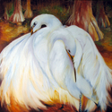 THE NESTING EGRETS ~ Louisiana Wildlife (thumbnail)