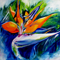 BIRD of PARADISE (thumbnail)