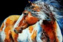MOHICAN the INDIAN WAR PONY (thumbnail)