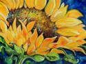 SUNFLOWER SEPTEMBER 2012 (thumbnail)