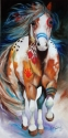 BRAVE ~ the INDIAN WAR HORSE (thumbnail)